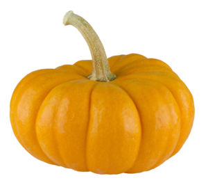 Real Pumpkin Transparent Background PNG Clip art