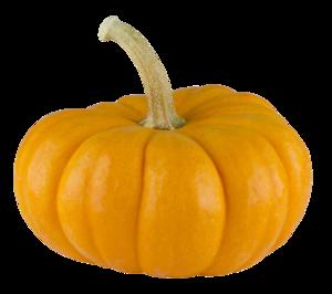 Real Pumpkin Transparent Background PNG Clip art