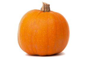Real Pumpkin Transparent PNG PNG Clip art