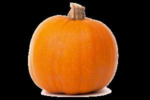 Real Pumpkin Transparent PNG PNG Clip art