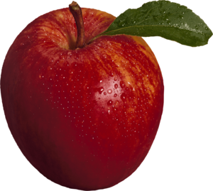 Red Apple PNG Image PNG Clip art