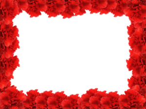 Red Flower Frame PNG Photo PNG Clip art