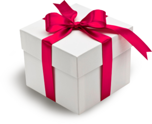 Red Gift Bow PNG PNG Clip art