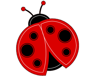 Red Ladybug PNG Clipart PNG Clip art
