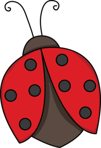 Red Ladybug PNG Photo PNG Clip art