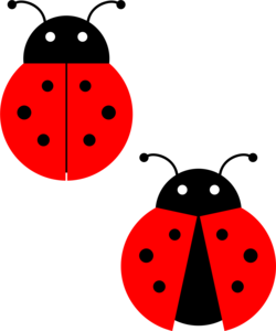 Red Ladybug PNG Photos PNG Clip art