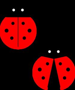 Red Ladybug PNG Photos PNG Clip art