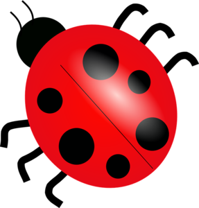 Red Ladybug PNG Picture PNG Clip art