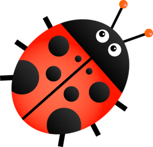 Red Ladybug Transparent Background PNG Clip art