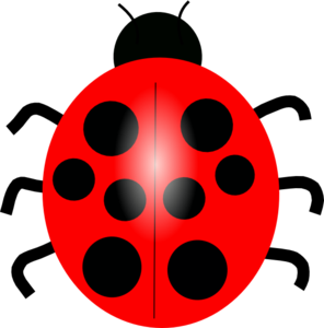 Red Ladybug Transparent Images PNG PNG Clip art