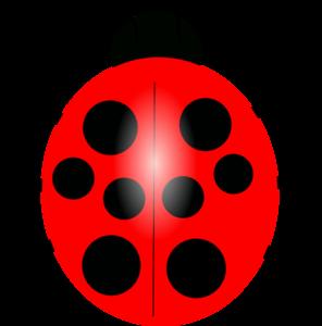 Red Ladybug Transparent Images PNG PNG Clip art