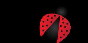 Red Ladybug Transparent PNG PNG Clip art