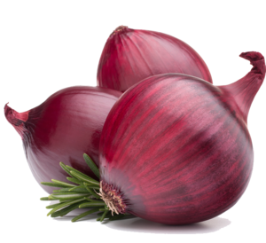 Red Onion PNG HD Clip art