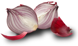 Red Onion Transparent Background PNG Clip art