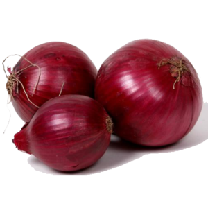 Red Onion PNG Clip art