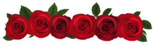 Red Rose PNG File PNG Clip art