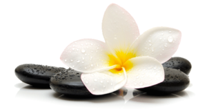 Relax PNG Transparent Picture PNG Clip art