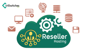 Reseller Hosting PNG Photo PNG Clip art