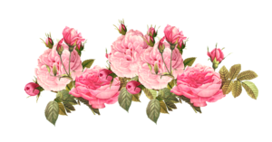Romantic Pink Flower Border PNG Photos PNG Clip art