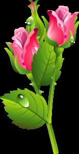 Romantic Pink Flower Border PNG Transparent Image PNG Clip art