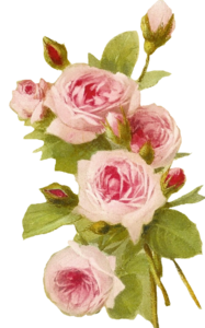 Romantic Pink Flower Border PNG Transparent PNG icon