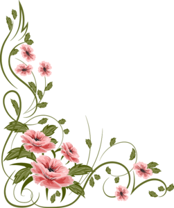 Romantic Pink Flower Border Transparent Background PNG image