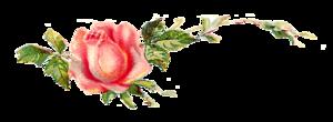 Romantic Pink Flower Border Transparent Images PNG PNG Clip art
