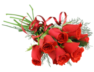 Rose Bunch PNG Clip art