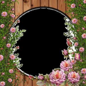 Rose Vine PNG Clip art