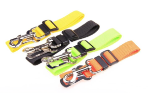 Safety Belt PNG Transparent Picture PNG Clip art