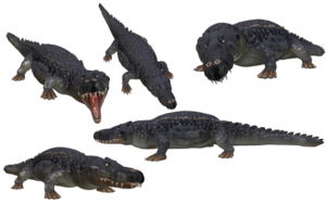 Saltwater Crocodile PNG Photo PNG Clip art