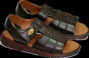 Sandal PNG Free Download PNG Clip art
