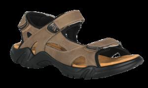 Sandal PNG Transparent PNG Clip art