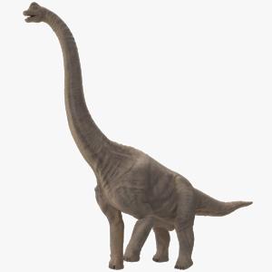 Sauropod PNG File PNG Clip art