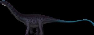 Sauropod PNG Image PNG Clip art