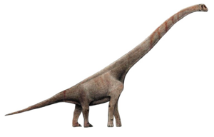 Sauropod PNG Transparent Picture PNG icon