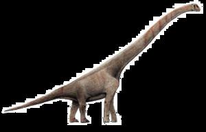Sauropod PNG Transparent Picture PNG Clip art