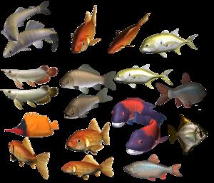 School of Fish PNG Image PNG Clip art