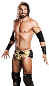 Seth Rollins PNG Picture PNG Clip art