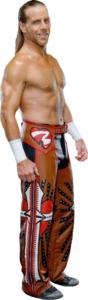 Shawn Michaels PNG File PNG Clip art