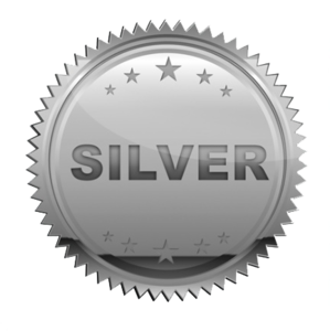 Silver Transparent PNG PNG Clip art