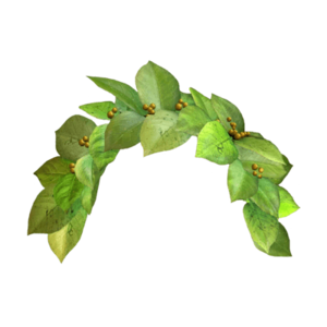 Snapchat Flower Crown PNG Image PNG Clip art