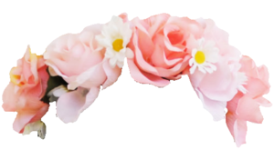 Snapchat Flower Crown PNG Photo PNG Clip art
