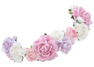 Snapchat Flower Crown PNG Photos PNG Clip art
