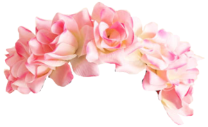 Snapchat Flower Crown PNG Pic PNG Clip art