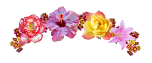 Snapchat Flower Crown PNG Picture PNG Clip art