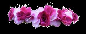 Snapchat Flower Crown PNG Transparent PNG Clip art