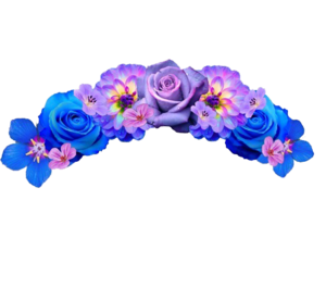 Snapchat Flower Crown Transparent Background PNG Clip art