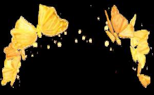 Snapchat Flower Crown Transparent PNG PNG Clip art