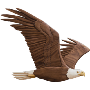 Soaring Eagle PNG Transparent Image PNG icon